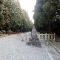 明治天皇の御陵の前を通り