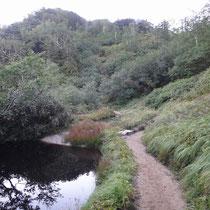 この池をすぎると小屋は近い?