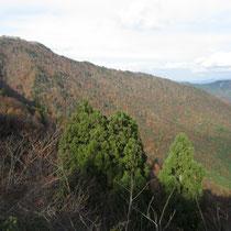 百里新道からの百里ケ岳の紅葉
