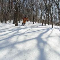さあ、滑って帰ろっと。支尾根のブナ林が一番楽しく滑れました。