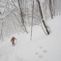 雪もひどくなり前も見にくいですが、ひたすら登ります。