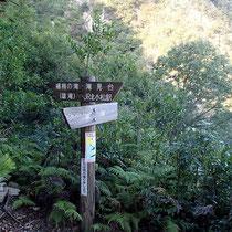 楊梅の滝(ゴールは近い)