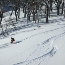 頂上からの滑り やや重い新雪