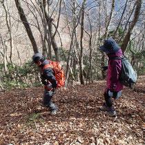落ち葉の絨毯を踏んで下山