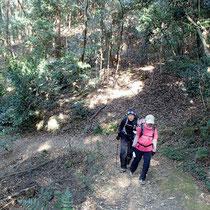 山道を歩いて
