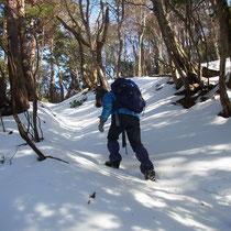 標高380m付近、夏道を登っていきます。
