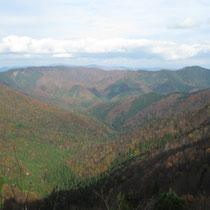山の彩りの向こうに駒ヶ岳~池原山の稜線