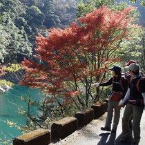 紅葉と美しい水が何とも印象的