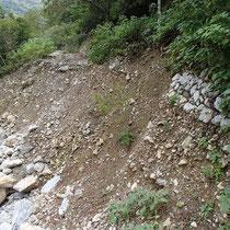 林道崩壊現場(下から見た様子)