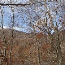 登山道からの景観はこんな感じで