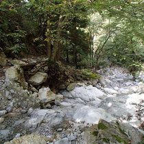 この辺りでは丹生川の水は伏流していて表面にはない。