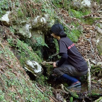 ここがカズラ谷(由良川)の最初の一滴