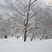 新雪のラッセルもこの時期ならではで楽しいものです。