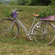 Vélo jardinière