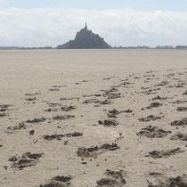 Traversée de la baie du Mont St Michel à pied