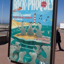 Rock et Phoques