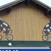 Vaches à vélo