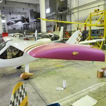 Sportflugzeug Teilfolierung in Pink Matt und Kupfer matt