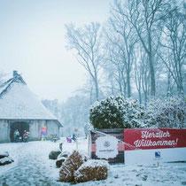 Passend zum organisierten Wintermarkt fängt es auch noch zu schneien an und die Scheune wird zu einem Ort voller Gemütlichkeit und Wärme.