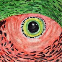 Elina - Papagei