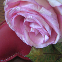 Sweetheart #1/photo-rharmon