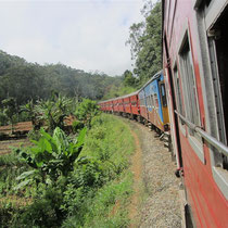 The train to the tea plantations in Sri Lanka