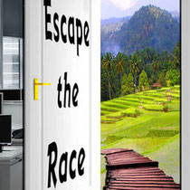 Escape the Race - a novel by me