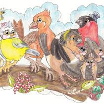 Blaumeise, Fichtenkreuzschnabel und Dompfaffen, Vögel Kinderbuchillustration, Nadine Drexler