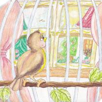 Der Kanarienvogel Hansi ist unglücklich in seinem Käfig, children's book illustration