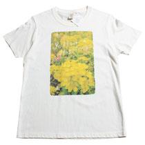 ①菜の花(Sサイズ相応)