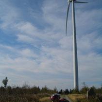 Windpark nahe Sternstein