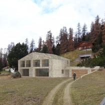 NEW ONE FAMILY HOUSE, SURLEJ 2016, STUDIO D'ARCHITETTURA R. MAURIZIO MALOJA