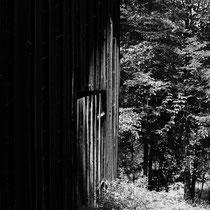 Cabin in the wood III