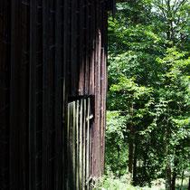 Cabin in the Wood II