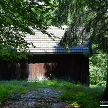 Cabin in the wood I