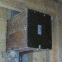 Beobachtungskasten in der Nisthütte