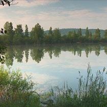 Photos de l'étang