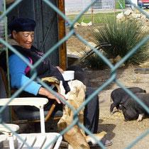 Praia Aldo Marin    die Frau mit den Schweinen....