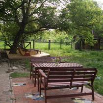 Sitzplatz und Holzdeck mit Nußbaum