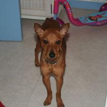 ELIOT - 1 an : Adopté le 18 Novembre 2010