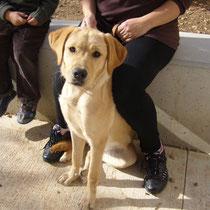 PRINCESSE - 7 mois : Adoptée le 23 Novembre 2008