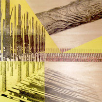 """""""Verso di alberi"""", 2008, pittura su legno, cm 60 x 60"""