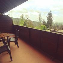 Balkon mit schöner Aussicht auf den Stubenberg See