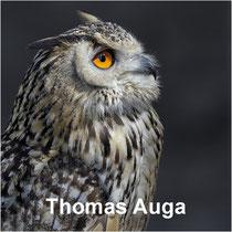Thomas Auga