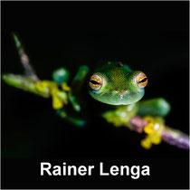 Rainer Lenga