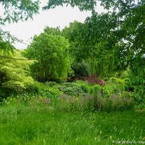 Scène naturelle, Regent's Park, Londres  - © Sandrine Tellier