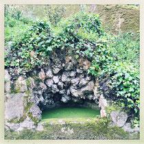 Quinta da Regaleira - Petite fontaine pleine de lentilles © Sandrine Tellier