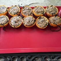 Boule de graines pour oiseaux - Remplir les coques et laisser durcir les boules de graines au frais - © Sandrine Tellier