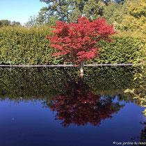 festival des jardins de chaumont sur loire 2018 - Possibilité d'une ile © Sandrine Tellier