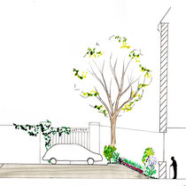 Avant-projet - Coupe sur les rives du jardin